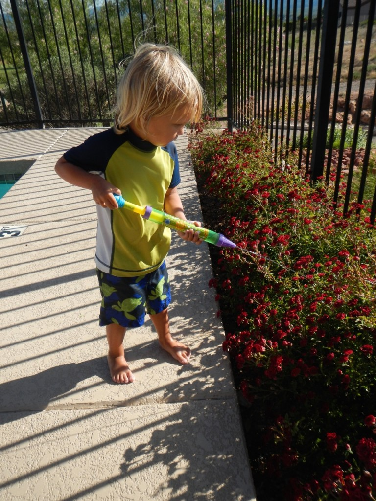 Sully had fun splashing in the shallow end of the pool, sticking his feet in the hot tub and playing squirt gun to water the plants.