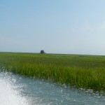An oysterman's house out in the sea grass marsh a few miles offshore