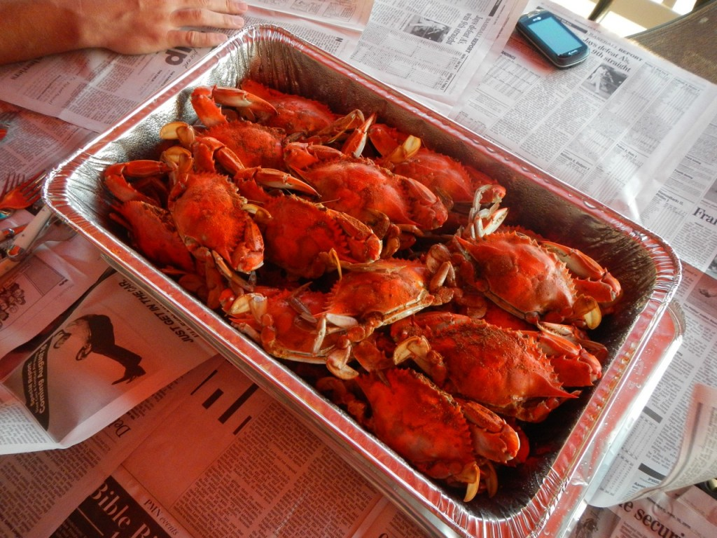 24 crabs for dinner!
