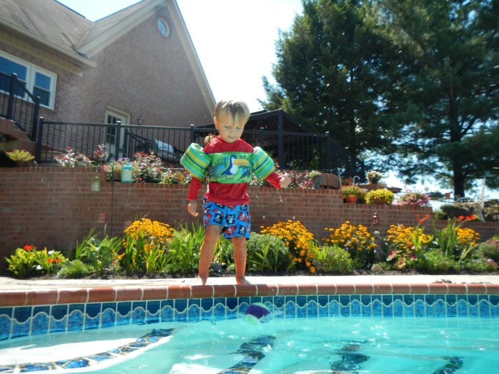 Sully likes to make little jumps in to the pool